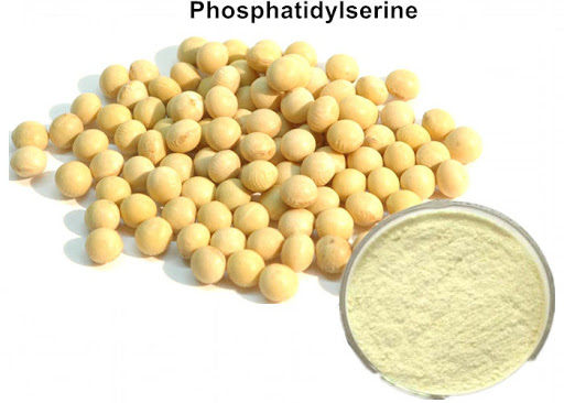 Why People Intake Phosphatidylserine As A Dietary Supplement?